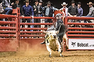 Wade Berg rides in the Xtreme Bull Riding at the Bismarck Rodeo on Thursday, Feb. 1, 2018.
