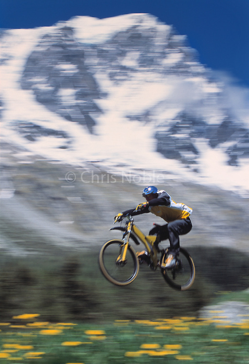 A male mountain biker flying at high speed above a meadow of wild flowers near Courmayeur on the Italian side of the Massif of Mont Blanc.