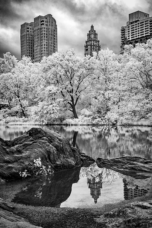 Central Park Reflection, New York City