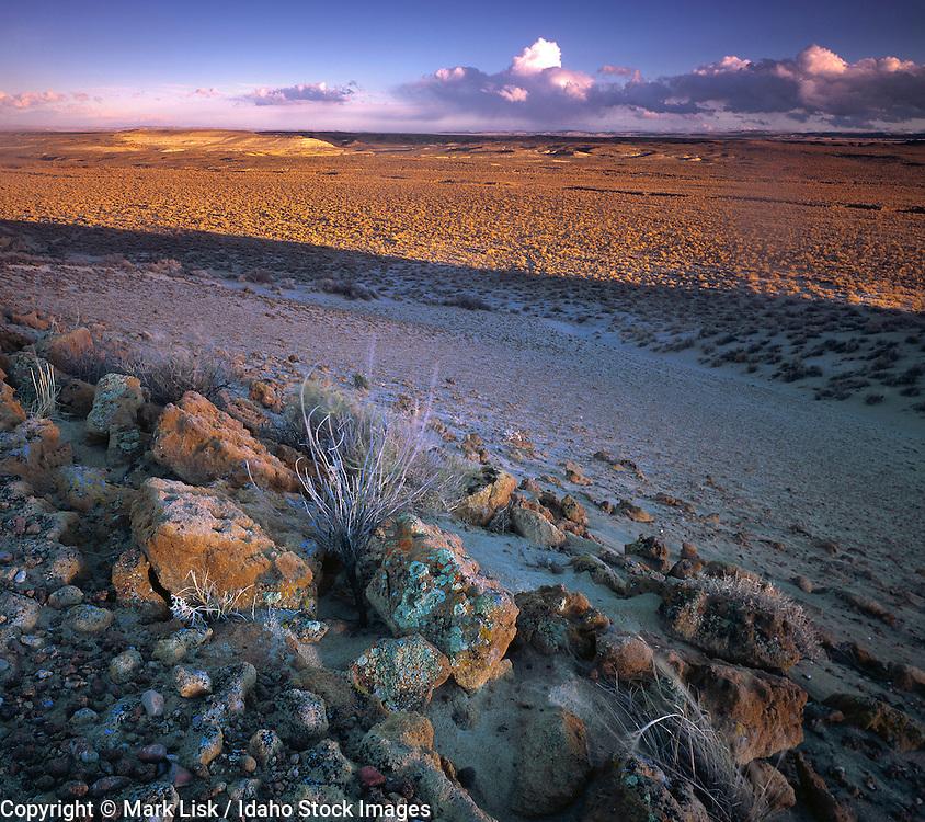 The harsh desert environment of South west Idahos Owyhee, Canyonlands,  Desert, Idaho.