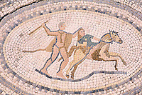 Maroc, Site de Volubilis, mosaique // mosaic, Volubilis site, Morocco