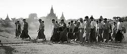 BURMA (MYANMAR), Mandalay Division, Bagan, Myinkabar. 2006. A final journey for Aung Thein Thay, whose body has been blessed by Buddhist monks and prepared for burial.