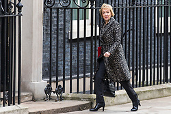 © Licensed to London News Pictures. 06/03/2018. London, UK. Leader of the House of Commons Andrea Leadsom for the weekly Cabinet meeting. Photo credit: Rob Pinney/LNP