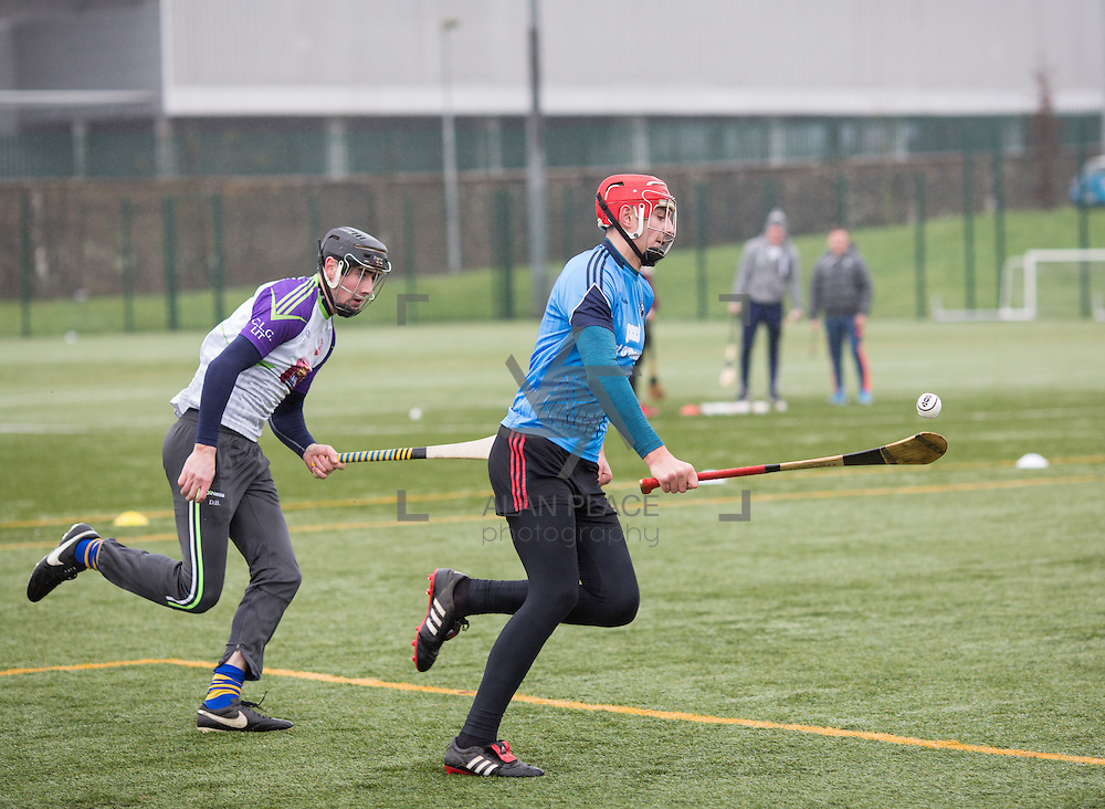 20.02.2017<br /> LIT Fitzgibbon Cup Hurlers. Picture: Alan Place