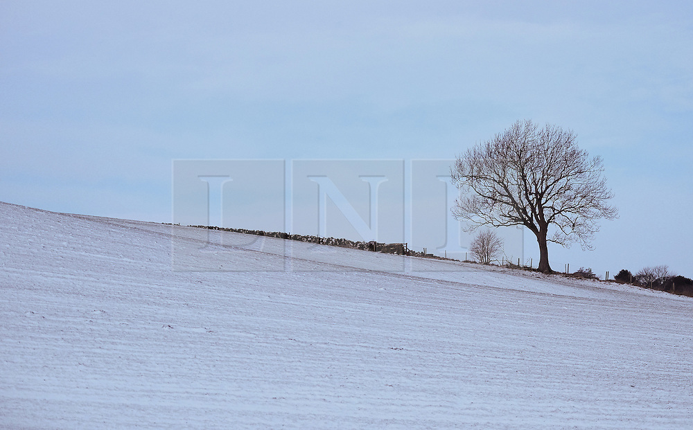 &copy; Licensed to London News Pictures. <br /> 29/01/2015. <br /> <br /> Danby, United Kingdom<br /> <br /> A lone tree stands against the morning sky after overnight snow in North Yorkshire. A wintery blast causing extremely cold weather is expected to cause some disruption over the next few days.<br /> <br /> Photo credit : Ian Forsyth/LNP