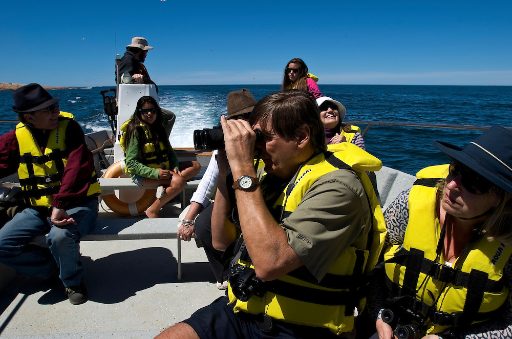 Dennis Simm, 59, an accountant from Toronto, watches wildlife through his binoculars during the Bahia Bustamante boat excursion.