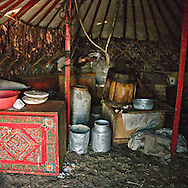 Mongolia. decoration inside the yurt ; Gambolt family; cattle breeder in Uyanga area, daily life in the yurt  aymak -   /  interieur de yourte. La famille Gambolt . famille d'eleveurs dans la region de Uyanga. vie quotidienne dans la yourte  ovorkangai province - Mongolie /  L0009102L