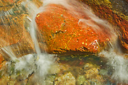 Red Rock Creek and detail of Red Rock Canyon , Waterton Lakes  National Park, Alberta, Canada