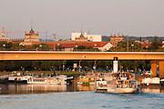 Schaufelraddampfer auf der Elbe, Dresden, Sachsen, Deutschland | steamer on River Elbe, Bridge, Dresden, Saxony, Germany,