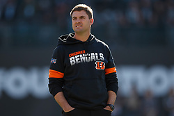 OAKLAND, CA - NOVEMBER 17: Head coach Zac Taylor of the Cincinnati Bengals watches his team warm up before the game against the Oakland Raiders at RingCentral Coliseum on November 17, 2019 in Oakland, California. The Oakland Raiders defeated the Cincinnati Bengals 17-10. (Photo by Jason O. Watson/Getty Images) *** Local Caption *** Zac Taylor