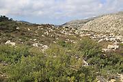 Carboniferous limestone landscape, near Benimaurell, Vall de Laguar, Marina Alta, Alicante province, Spain