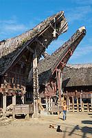 Indonesie. Sulawesi (Celebes). Pays Toraja, Tana Toraja. Maison toraja (tongkonan) au village de Palawa.// Indonesia. Sulawesi (Celebes Island). Tana Toraja. Traditional house (tongkoman) at Palawa village.