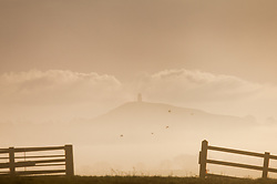 © Licensed to London News Pictures. 18/01/2015. Glastonbury, Somerset, UK. Glastonbury Tor through the mist on the Somerset levels near Glastonbury Tor this morning, 18th January 2015. Photo credit : Rob Arnold/LNP