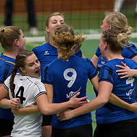 Volleybal 2013