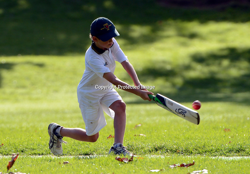 Junior Cricket, Year 4 Cornwall Cricketers on the last day of the season, Auckland, New Zealand, Saturday 31 March 2012. Photo: Andrew Cornaga /Photosport.co.nz