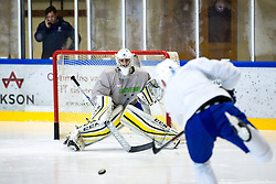 Matija Pintaric at first practice of Slovenian National Ice Hockey team before IIHF Ice Hockey World Championship Division I Group A in Budapest, on April 17, 2018 in Ledena dvorana, Bled, Slovenia. Slovenia. Photo by Matic Klansek Velej / Sportida
