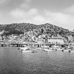 Catalina Island very high resolution panorama black and white panorama photo. Includes downtown Avalon, Catalina Casino, and Avalon Pier along Avalon Harbor. Beautiful Santa Catalina Island is a popular travel destination off the Southern California coast in the United States of Amercia. Panoramic image ratio is 1:3. Copyright ⓒ 2017 Paul Velgos with All Rights Reserved.