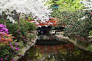 Descanso Gardens Photos