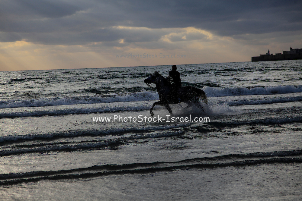 Silhouette of a man riding a horse on the beach