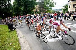 Peloton at 42nd Grand Prix Kranj - Filip Majcen Memorial 2009 cycling race (UCI Cat. 1.1), on May 30, 2009, in Kranj, Slovenia.  (Photo by Vid Ponikvar / Sportida)