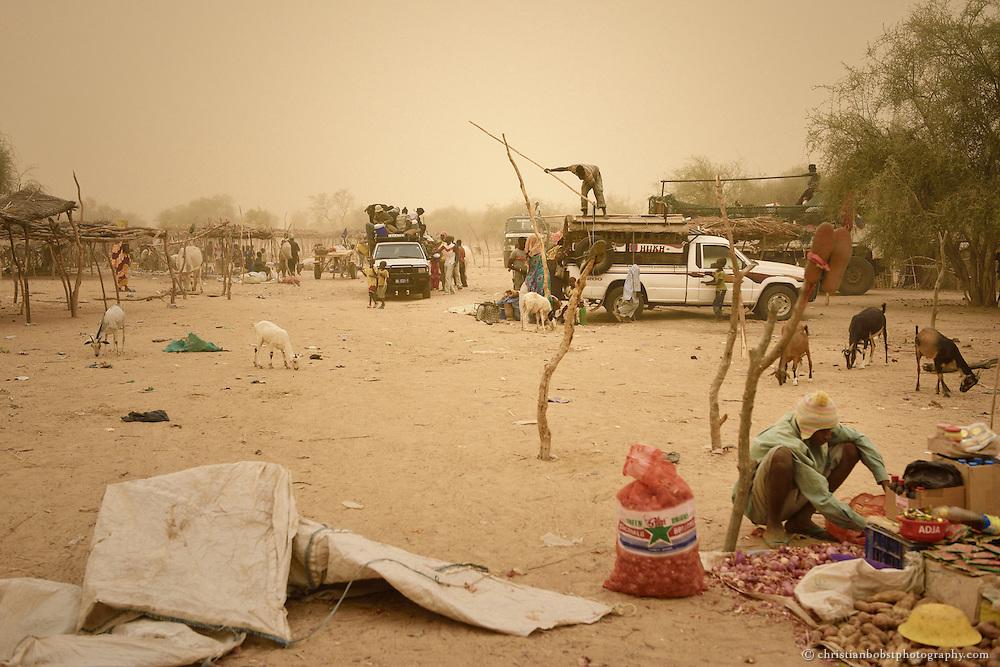 Illustration des täglichen Lebens der Kleinbauern in YOUNOUFERE in Senegal. Saharastaub hüllt die Luft an diesem Tag in einen heissen, gelben Nebel.