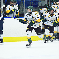 5th year forward Bailey Braden (8) of the Regina Cougars in action during the Women's Hockey home game on October 14 at Co-operators arena. Credit: Arthur Ward/Arthur Images