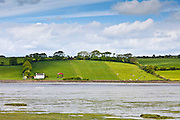Hill farm smallholding on hill slope overlooking Courtmacsherry Bay near Timoleague, West Cork, Ireland