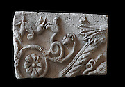 Fragment of a sarcophagus carved with a winged animal and foliage designs, 2nd century AD, from the Ethnographic Museum in Berat, Albania. The carving was originally part of a huge cliff which was carved for decoration and later used for a sarcophagus. Picture by Manuel Cohen