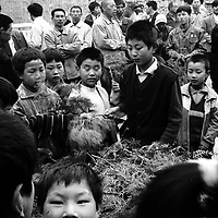 LIUJIAZHUANG VILLAGE, 8 APRIL 2001: velievers take palm tree twigs before the palm sunday mass. China cut relations with the vatican in the early fifites and since then, established a Patriotic catholic Church that's controlled by Chinese authorities.<br />Catholics who refused to give up their ties with the Vatican, started worshipping in underground churches and consequently were persecuted for a long time. Since the late nineties though, relations with the vatican informally started to improve. Although China still has no diplomatic relations, many representatives from official churches met the pope John Paull II secretely . Since the pope's death on Saturday, thousands of catholics commemorate John Paull II  in special masses throughout China.