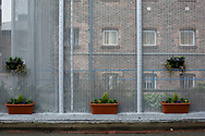 Recently planted flower boxes within the precincts of HMP Liverpool, also known as Walton Prison. The prison was given a scathing report in 2017 which pointed out various failings and problems. Present governor Pia Sinha was appointed in that year and in the next two years she turned the prison around with a programme of improvements and support for inmates and infrastructure. HMP Liverpool houses a maximum of 700 prisoners with an overall staff of around 250.