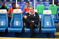 Birmingham City manager Harry Redknapp on the bench