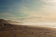 The beach near Morro Bay, CA