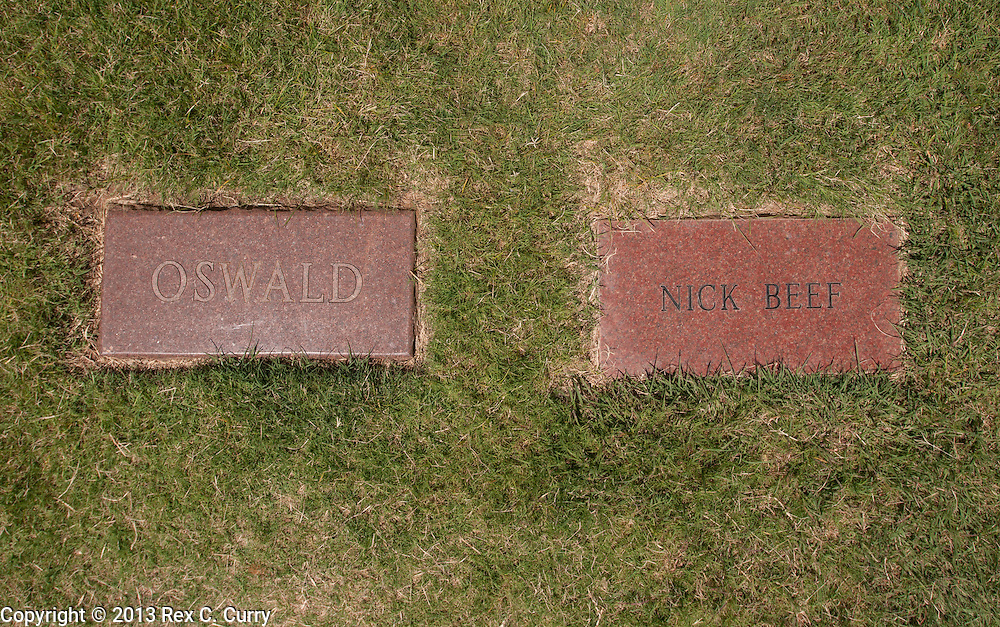 "The grave marker of Lee Harvey Oswald in the Shannon Rose Hill Cemetery in Fort Worth, Tx. is next to an empty grave with the name of Nick Beef on the marker.  The space was bought by guy named Patric Abedin, a 56-year-old ""nonperforming performance artist"" in New York City."