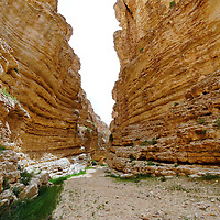 Negev Highlands