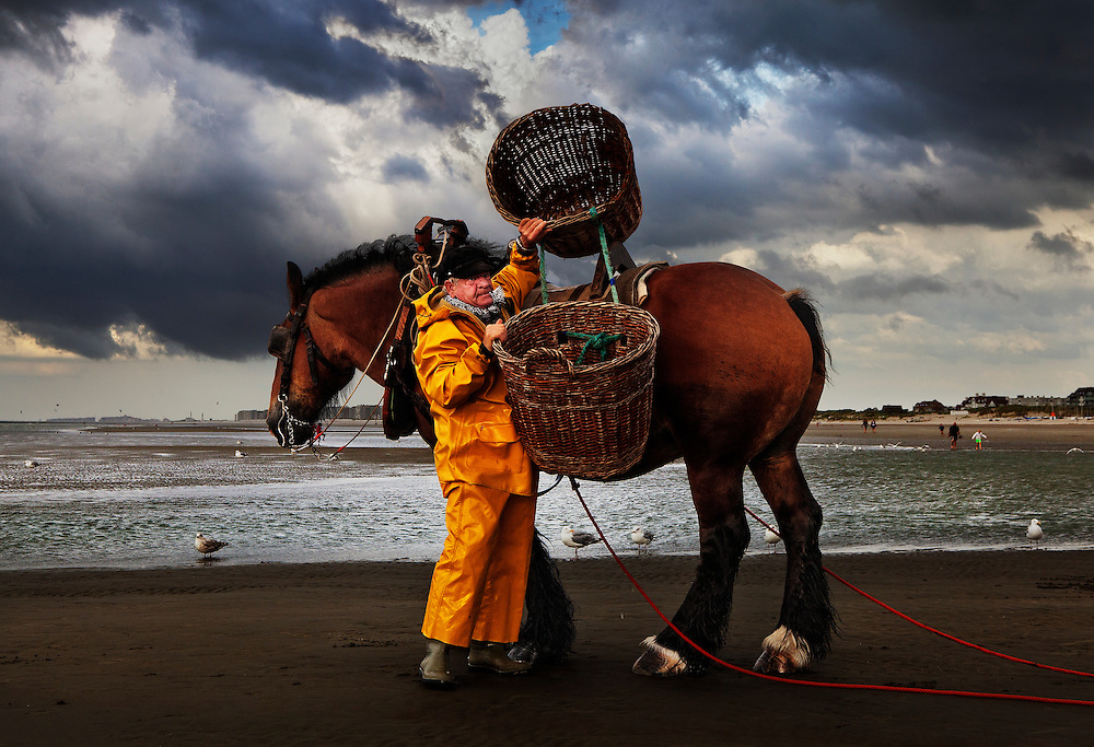 Horseback shrimp fisherman of Oostduinkerke, Belgium. <br /> <br /> Shrimp fishing on horseback was once a popular form of fishing in certain areas of Belgium, France, Holland and England.  Oostduinkerke is the only place left in the world where this 500 year old tradition is still in practice.<br /> <br /> In December 2013 Unesco recognized shrimpfishing on horseback as intangible cultural heritage.