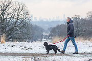 UNITED KINGDOM, London: 23 January 2019 A dog walker braves the cold in a frosty Richmond Park in London this morning. Temperatures sunk to below freezing yesterday causing snow flurries across the country. <br /> Rick Findler / Story Picture Agency