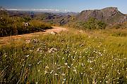Serro_MG, Brasil...Paisagem em Serro, Minas Gerais...Landscape in Serro, Minas Gerais...Foto: LEO DRUMOND / NITRO