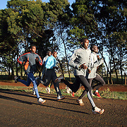 Kenyan long distance runners go for a morning run in the high altitude village of Iten, in Kenya's rift valley. The recent post-election violence in Kenyan disrupted many runners training programs, but they are now back in training for the upcoming Olympic games in China and other international events.