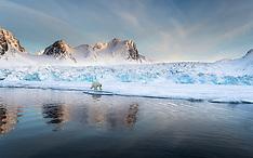 Svalbard #41 2019