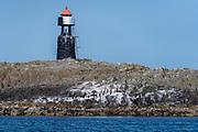 Light house and cormorant colony at Flatholmen, Skaarvaagen, Langöy, Vestrålen, Norway.