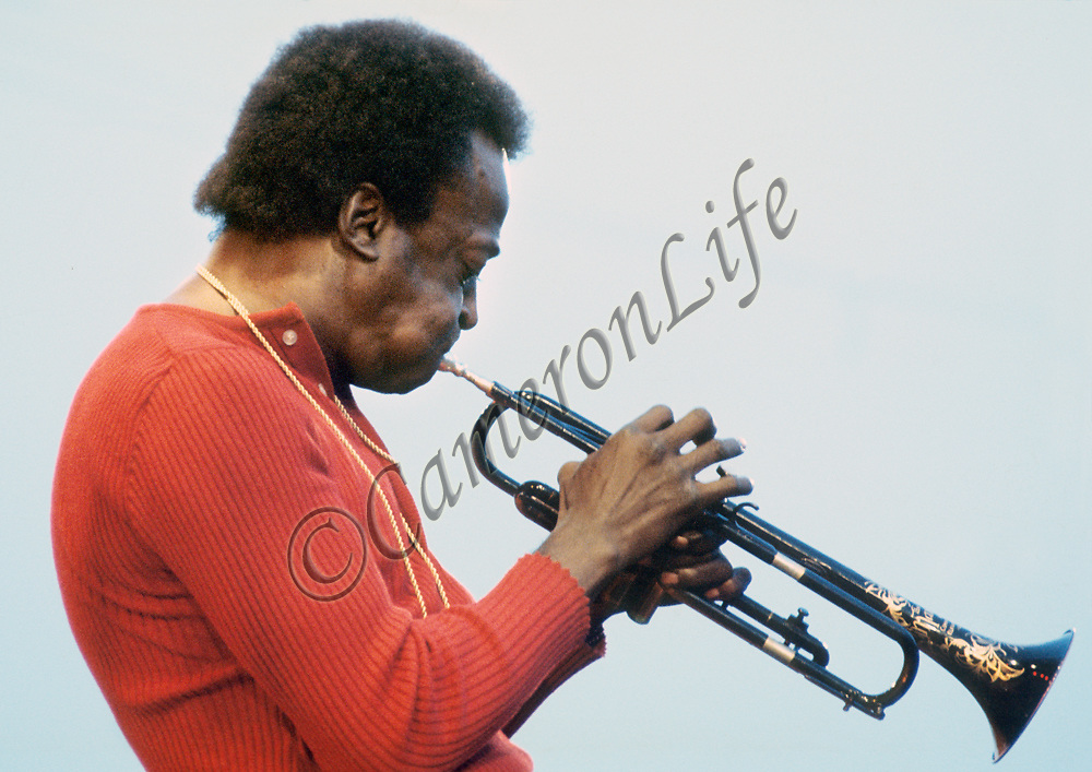 "Miles Davis - blow.- This image of Miles perfectly compliments Guy Portelli's piece ""Blow"" - from this photograph you can see how well Guy has captured Miles' playing profile."