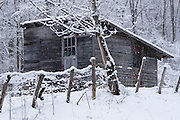 Shed after winter squall