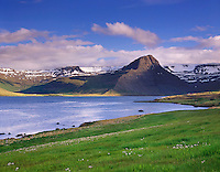 ?Ålftafj??rdur and the highlands of the Westfjords of Iceland, Europe beautiful