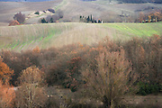 late autumn wood and agricultural hilly landscape France Languedoc Aude Razes