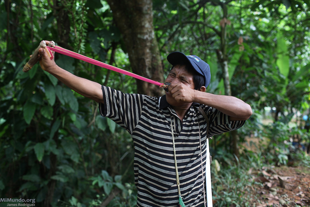 Fernando Abrego Pineda, a Ngäbe man and member of COCABO, demonstrates the use of his slingshot. Mr. Abrego primarily uses the weapon for hunting small animals or for protection. COCABO: Junquito, Almirante, Changuinola, Bocas del Toro, Panamá. September 1, 2012.