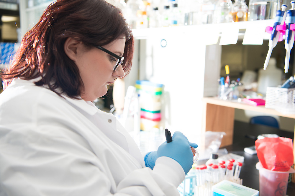 PhD student Rachel Zapf works in Carroll Lab. © Ohio University/ Photo by Ben Siegel