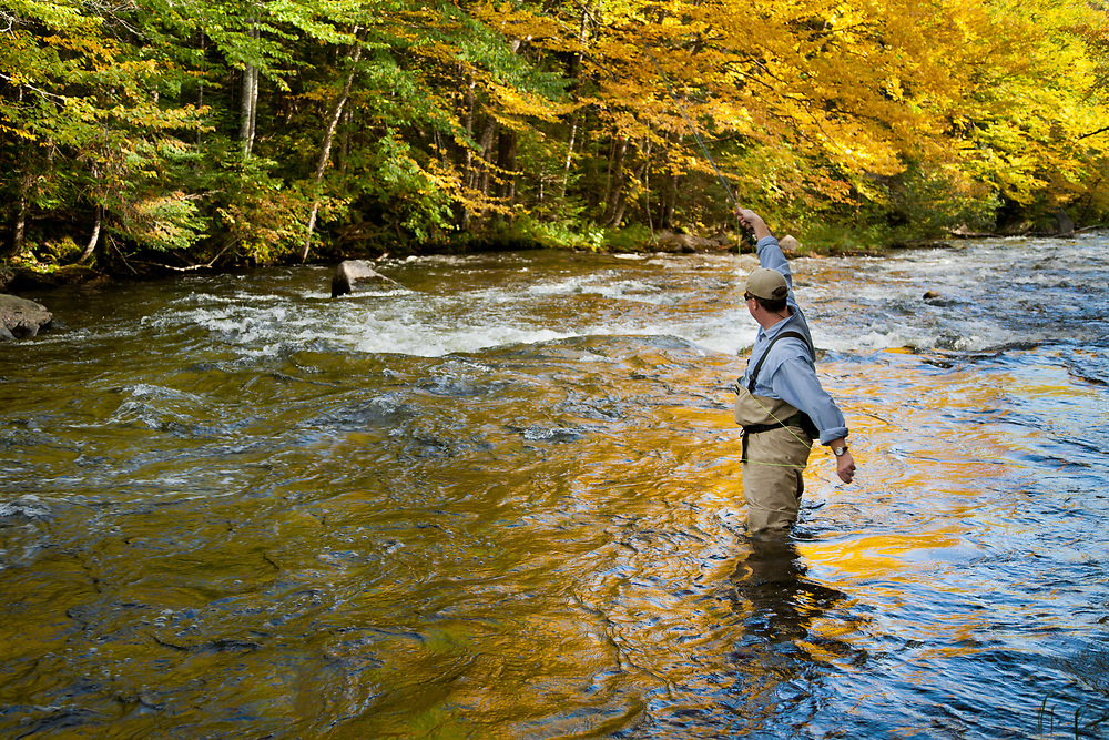 Male angler setting the hook while fly fishing for trout on the upper Connecticut River in northern New Hampshire.