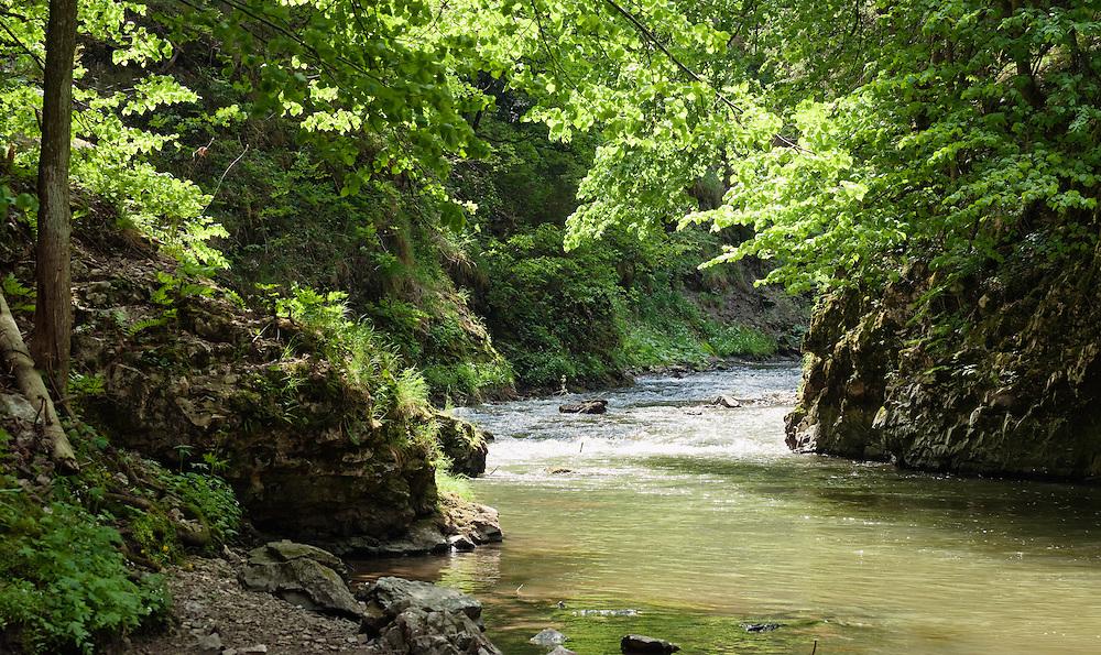 Hornad Canyon, Hornad River, Slovak Paradise National Park, Slovensky Raj, Slovakia