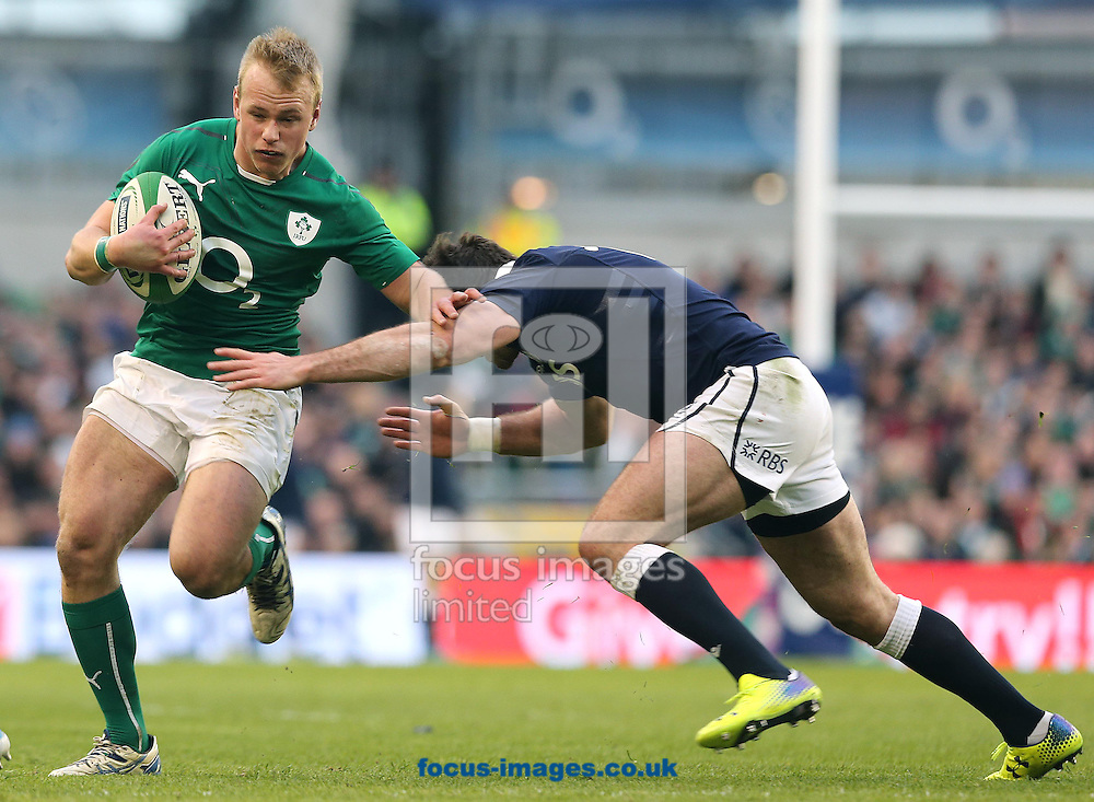 Picture by Lorraine O'Sullivan/Focus Images Ltd +353 872341234<br />