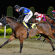 Rapid Water and L P Keniry winning the 8.30 race